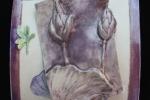 tornwaterlilies