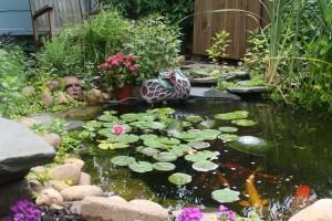 Summer Pond at Earthsongs Garden